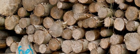 Biomass-wood-fuel