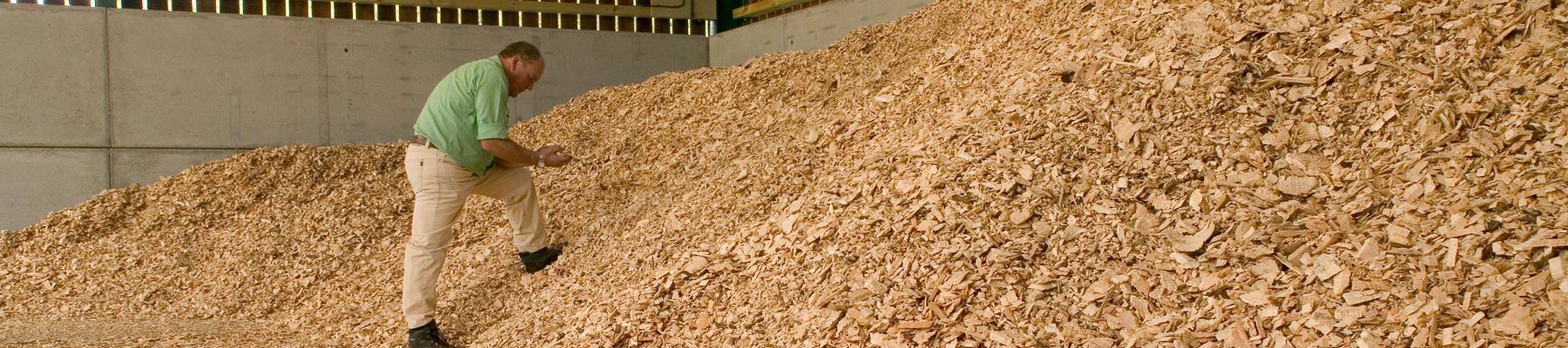 Why-choose-biomass heat10