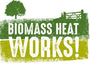 Revised Biomass Ideas