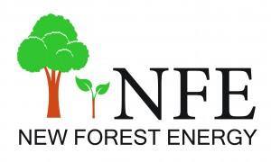 NFE_logo-01